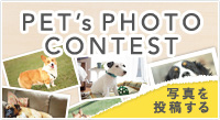 PET's PHOTO CONTEST