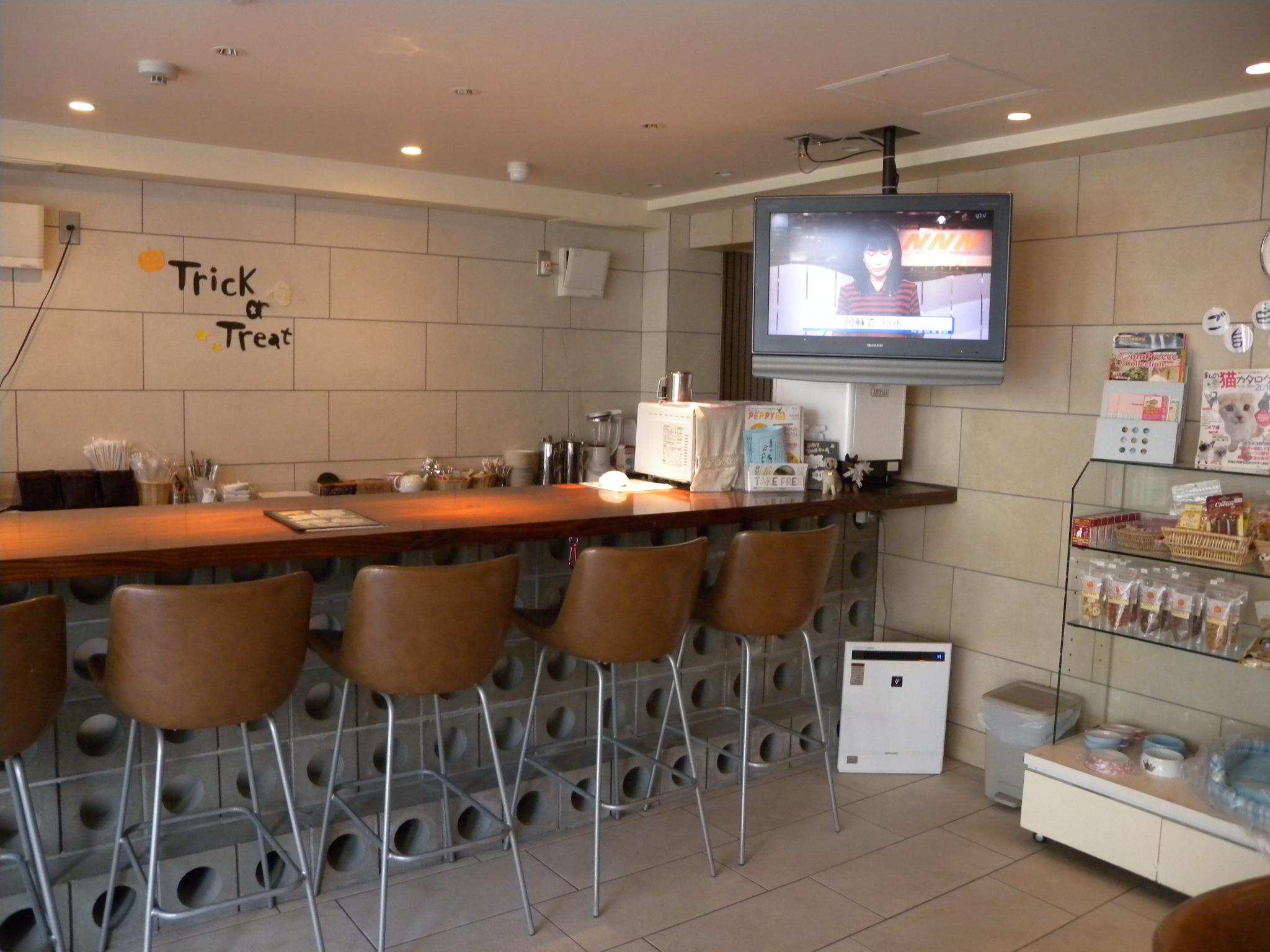ドックカフェ Serge (大阪府大阪市西区のドッグカフェ)の口コミ・評判