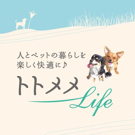 人とペットの暮らしを楽しく快適に♪トトメメLife