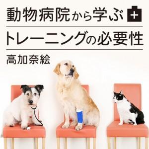 動物病院から学ぶトレーニングの必要性